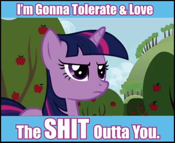 Purple pony with a fierce expression with the caption: I'm Gonna Tolerate & Love The SHIT Outta You.