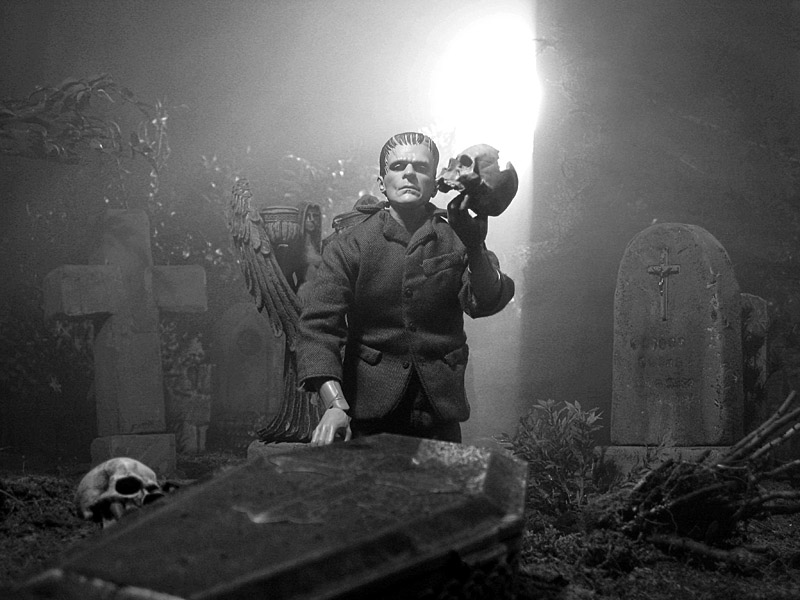 A diorama by Mick Baltes (2008) evokes the original black-and-white look of James Whale's 1931 film Frankenstein to produce his own transformative narrative as the monster contemplates the skull of someone for whom death held no monstrous resurrection. The cemetery diorama includes many repurposed and modified Halloween decorations.